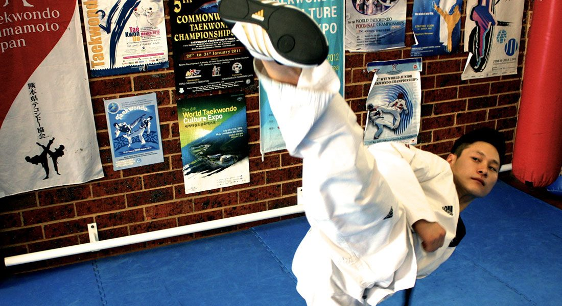Taekwondo Interactive