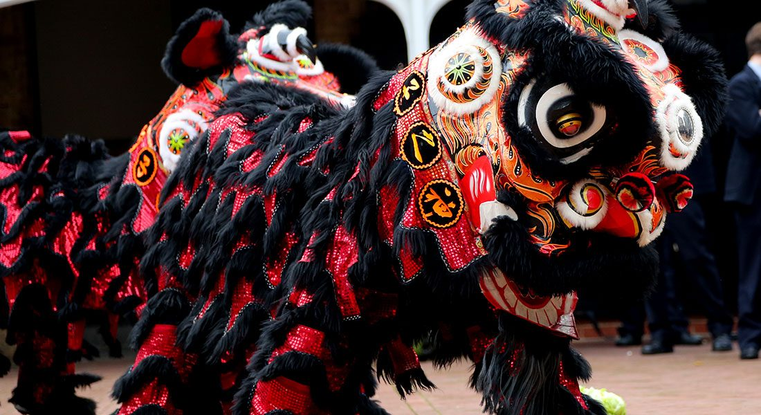 """Featured image for """"Chinese Lion Dance by May Wang"""""""
